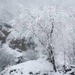 بارش ناگهانی برف پاییزی در مازندران